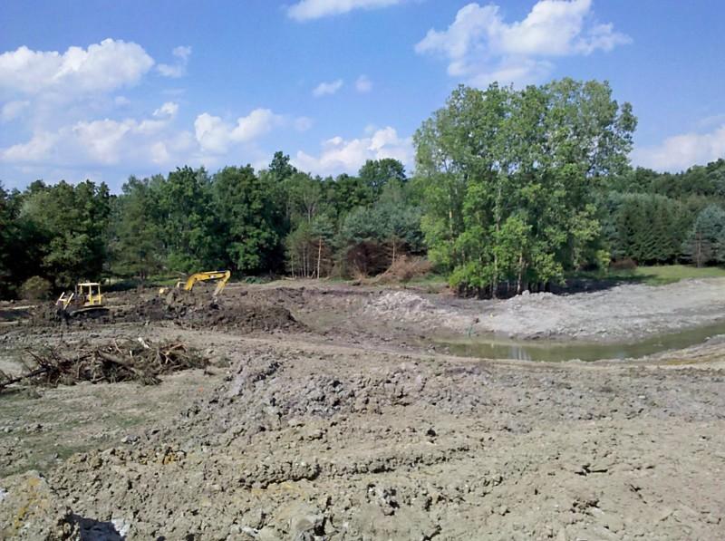 C  Users Scott Pictures ponds a ponds 2011 ann arbor mikee pond 2 Ann Arbor Mikee pond 2  (4)