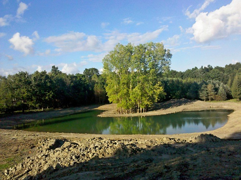 C  Users Scott Pictures ponds a ponds 2011 ann arbor mikee pond 2 Ann Arbor Mikee pond 2  (9)