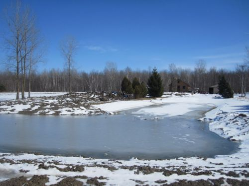 C  Users Scott Pictures ponds a ponds 2011 mayville larger pond mayville resized 600