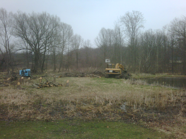 C  Users Scott Pictures ponds a ponds 2011 hartland Hartland Scott (17) resized 600