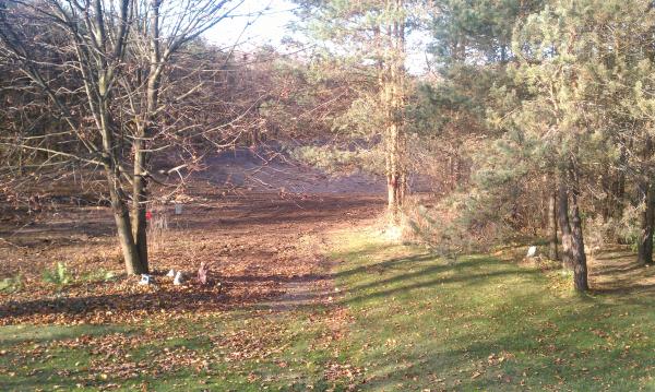 C  Users Scott Pictures ponds a ponds 2011 ann arbor pond lake  dig pond lake ann arbor mi (27) resized 600