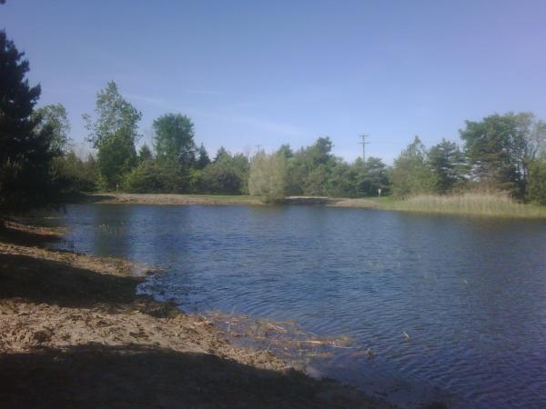 Bruce twp N CLEan (HOA pond maintenance) (19) resized 600
