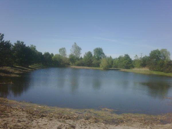 Bruce twp N CLEan (HOA pond maintenance) (21) resized 600