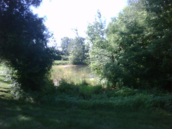 saline N retention pond maintenance (3) resized 600