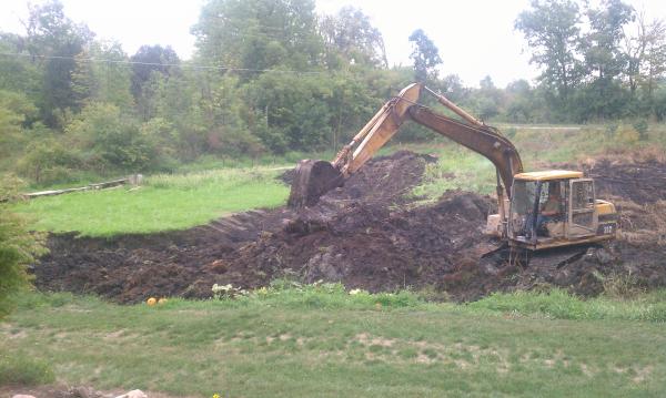 Ann Arbor new pond (michigan fish pond) (16) resized 600