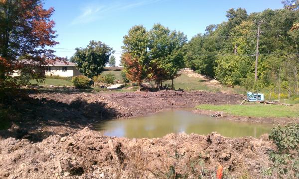 Ann Arbor new pond (michigan fish pond) resized 600
