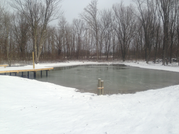 pond dock nice resized 600