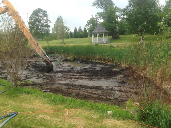 Ann Arbor Pond repair (N) (3) resized 600