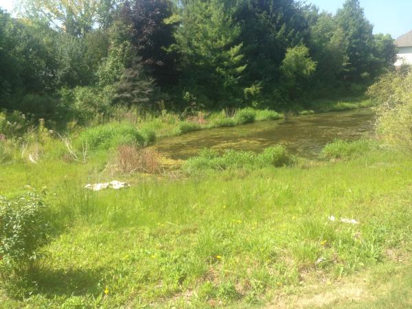 (N) Farmington Hills detention pond fix (19) resized 600