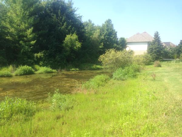(N) Farmington Hills detention pond fix (22) resized 600