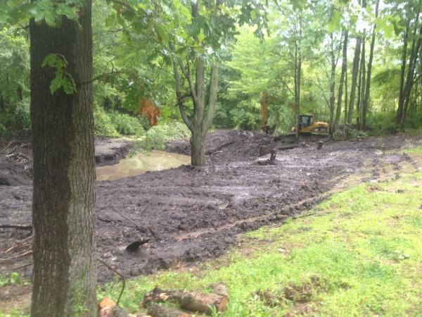 (N) Davisburg, MI Dying pond restoration (2) resized 600
