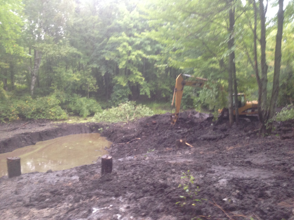 (N) Davisburg, MI Dying pond restoration (4) resized 600