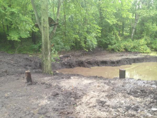 (N) Davisburg, MI Dying pond restoration (6) resized 600