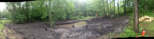(N) Davisburg, MI Dying pond restoration (7) resized 600
