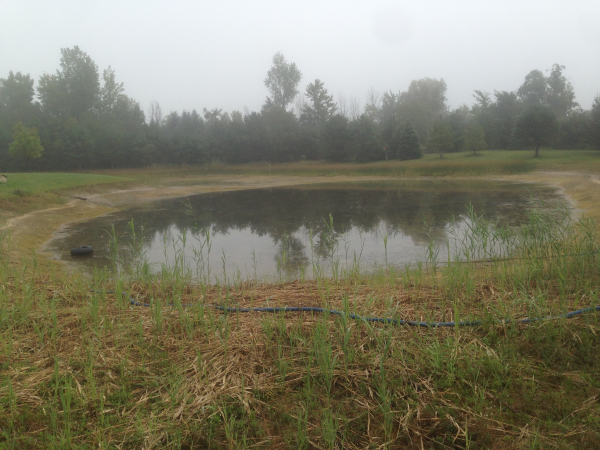 Caro, MI Aquaitic weed control Michigan (4) resized 600