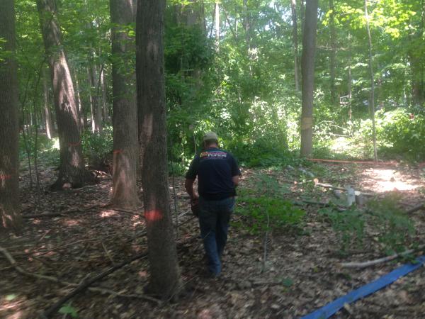 (N) Canton, Michigan backyard pond install (65) resized 600