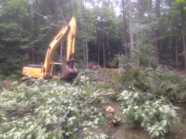 (N) Canton, Michigan backyard pond install (141) resized 600