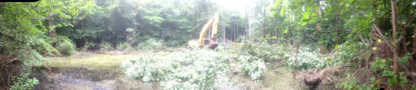 (N) Canton, Michigan backyard pond install (142) resized 600