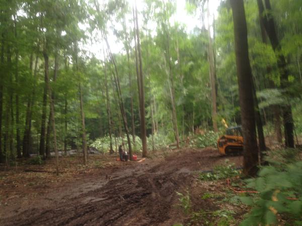 (N) Canton, Michigan backyard pond install (148) resized 600