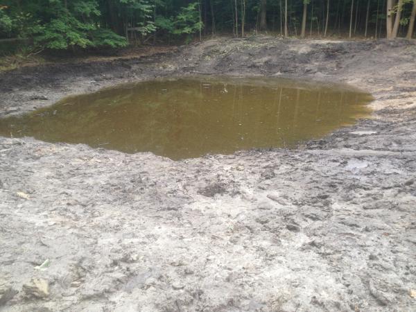 (N) Canton, Michigan backyard pond install (176) resized 600
