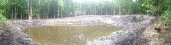 (N) Canton, Michigan backyard pond install (182) resized 600