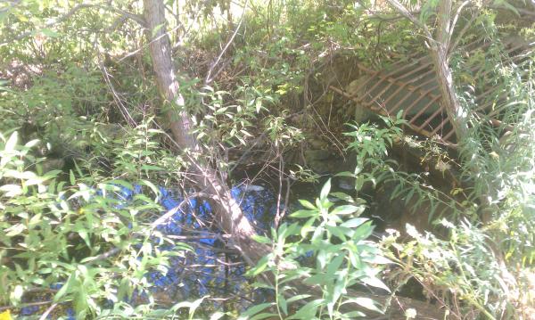 ( 2013 N Barton Hills) Michigan pond repair Dexter (3) resized 600
