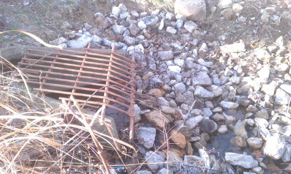 ( 2013 N Barton Hills) Michigan pond repair Dexter (15) resized 600
