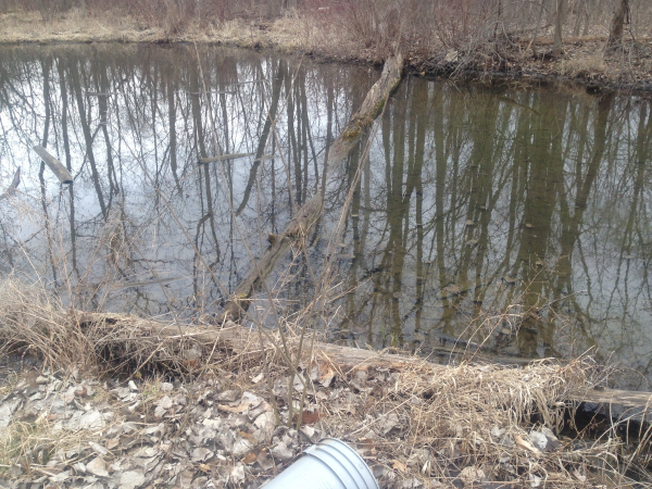 Ypsilanti canal dredge (6) resized 600