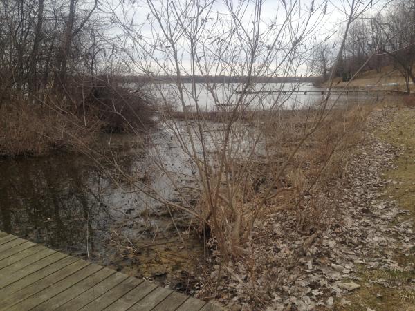 Ypsilanti canal dredge (4) resized 600