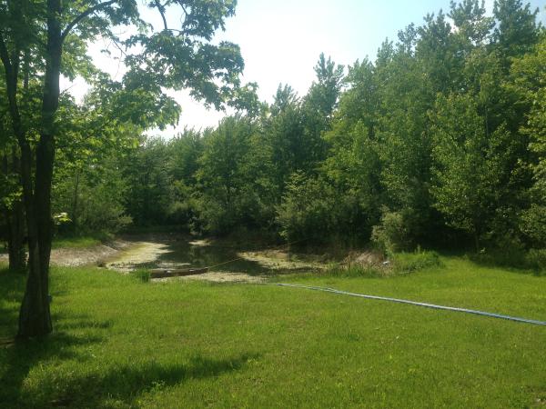 Birch Run(N)  pond Michiganrestorationclean out (20) resized 600