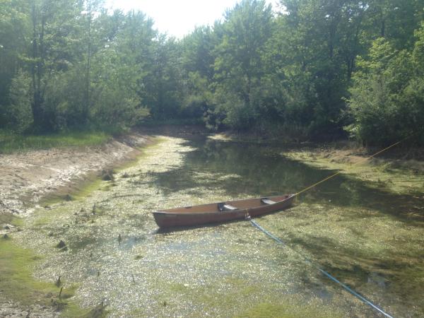 Birch Run(N)  pond Michiganrestorationclean out (18) resized 600
