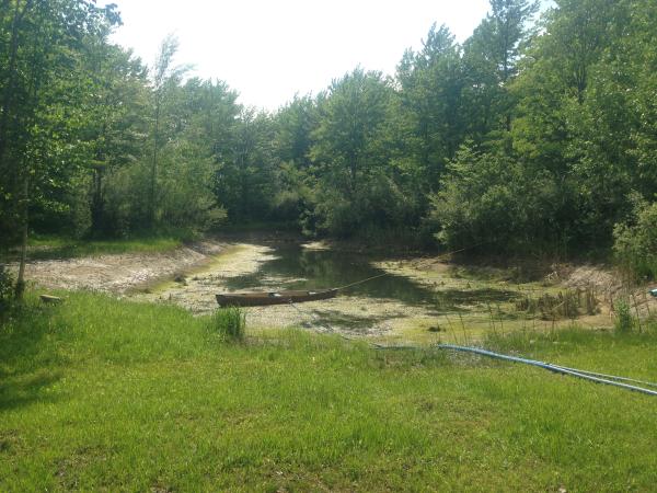 Birch Run(N)  pond Michiganrestorationclean out (16) resized 600