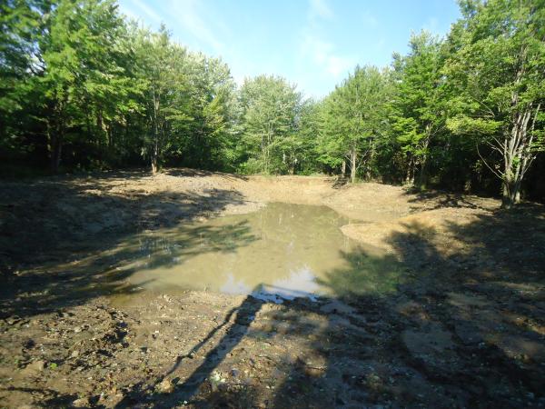 Birch Run(N)  pond Michiganrestorationclean out (6) resized 600