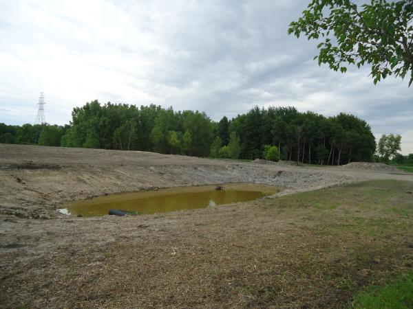 Potterville. Michigan N Michgan pond builder pond construction new pond Lansing (84) resized 600