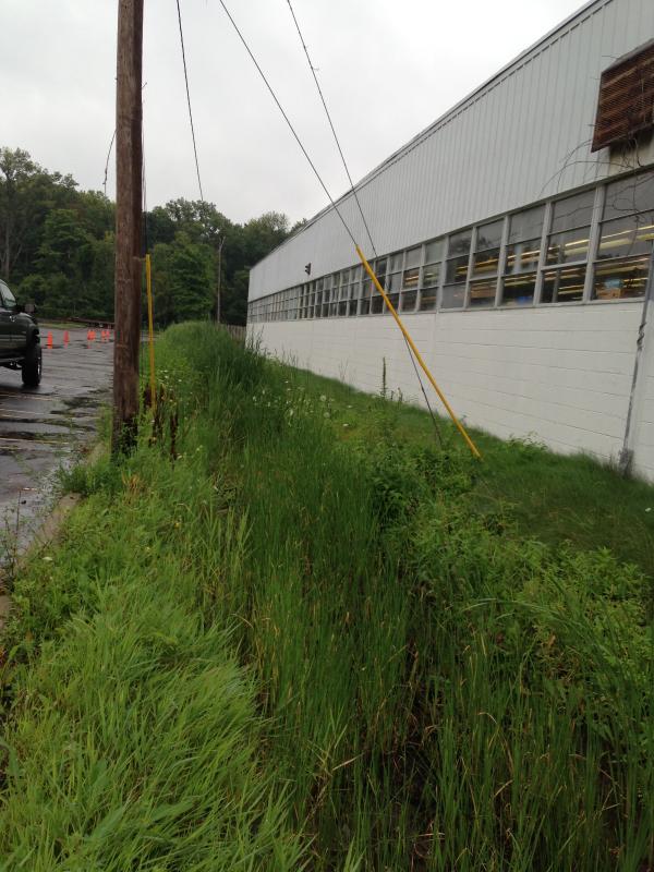 Southfield, Michigan Ditch restoration Michigan  Lear Group Ditch (34) resized 600