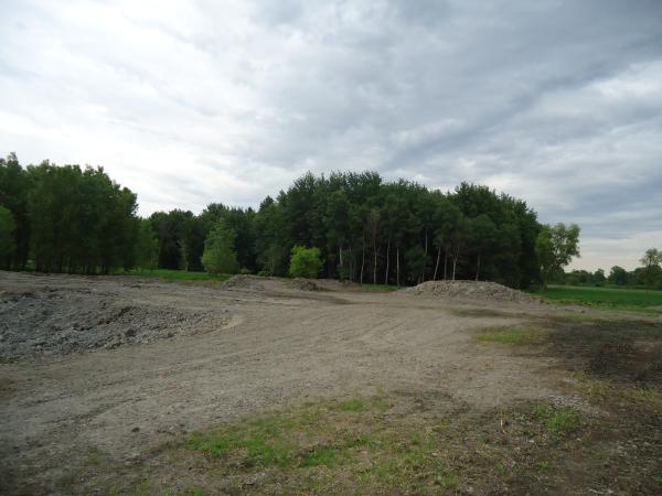 Potterville. Michigan N Michgan pond builder pond construction new pond Lansing (87) resized 600