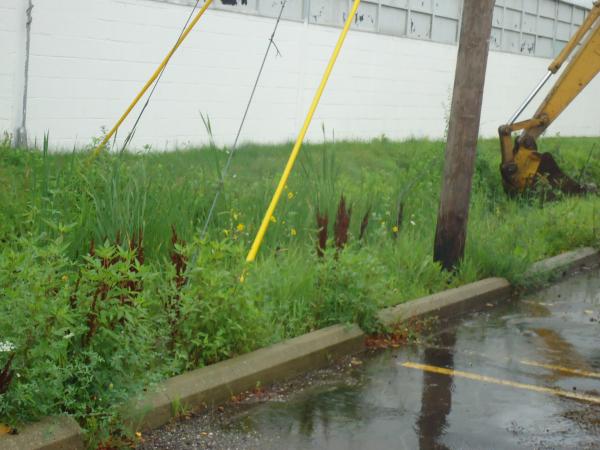 Southfield, Michigan Ditch restoration Michigan  Lear Group Ditch (11) resized 600