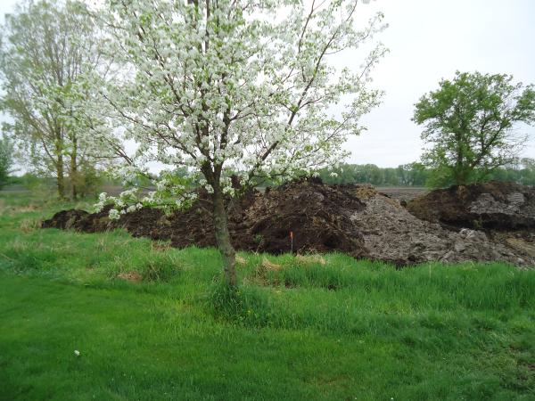 Potterville. Michigan N Michgan pond builder pond construction new pond Lansing (14) resized 600