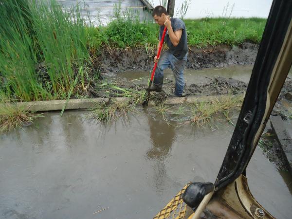 Southfield, Michigan Ditch restoration Michigan  Lear Group Ditch (30) resized 600