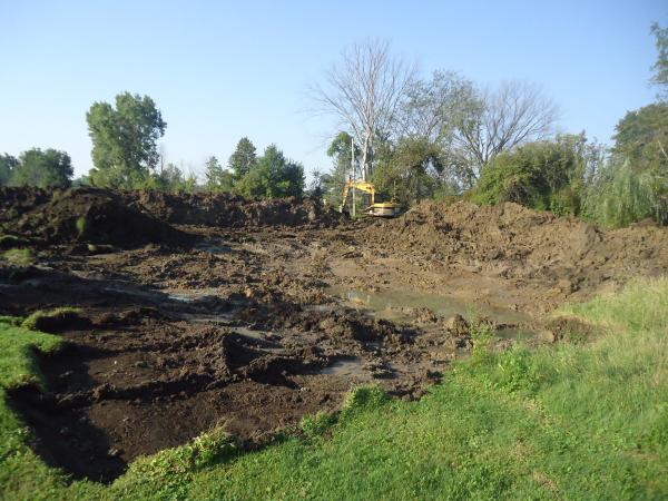 Williamston, Michigan N Pond consultants Michigan pond lake managmen (4) resized 600