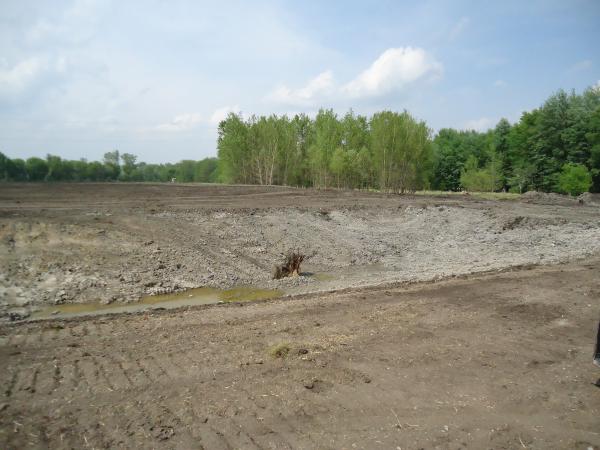 Potterville. Michigan N Michgan pond builder pond construction new pond Lansing (75) resized 600