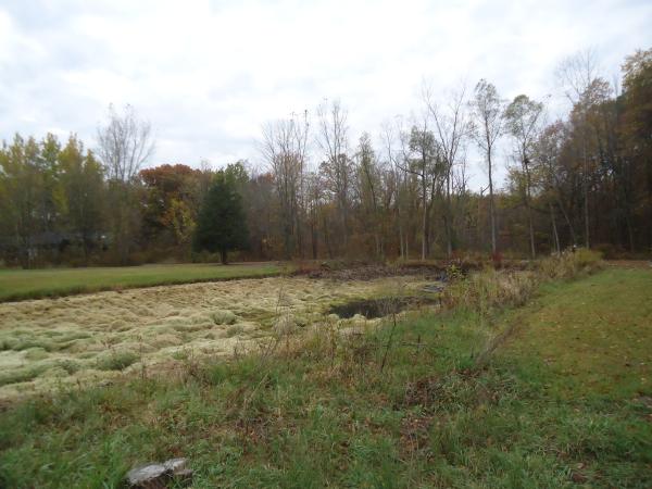 White Lake, Michigan Inland lake dredging Michigan Restoration (3) resized 600