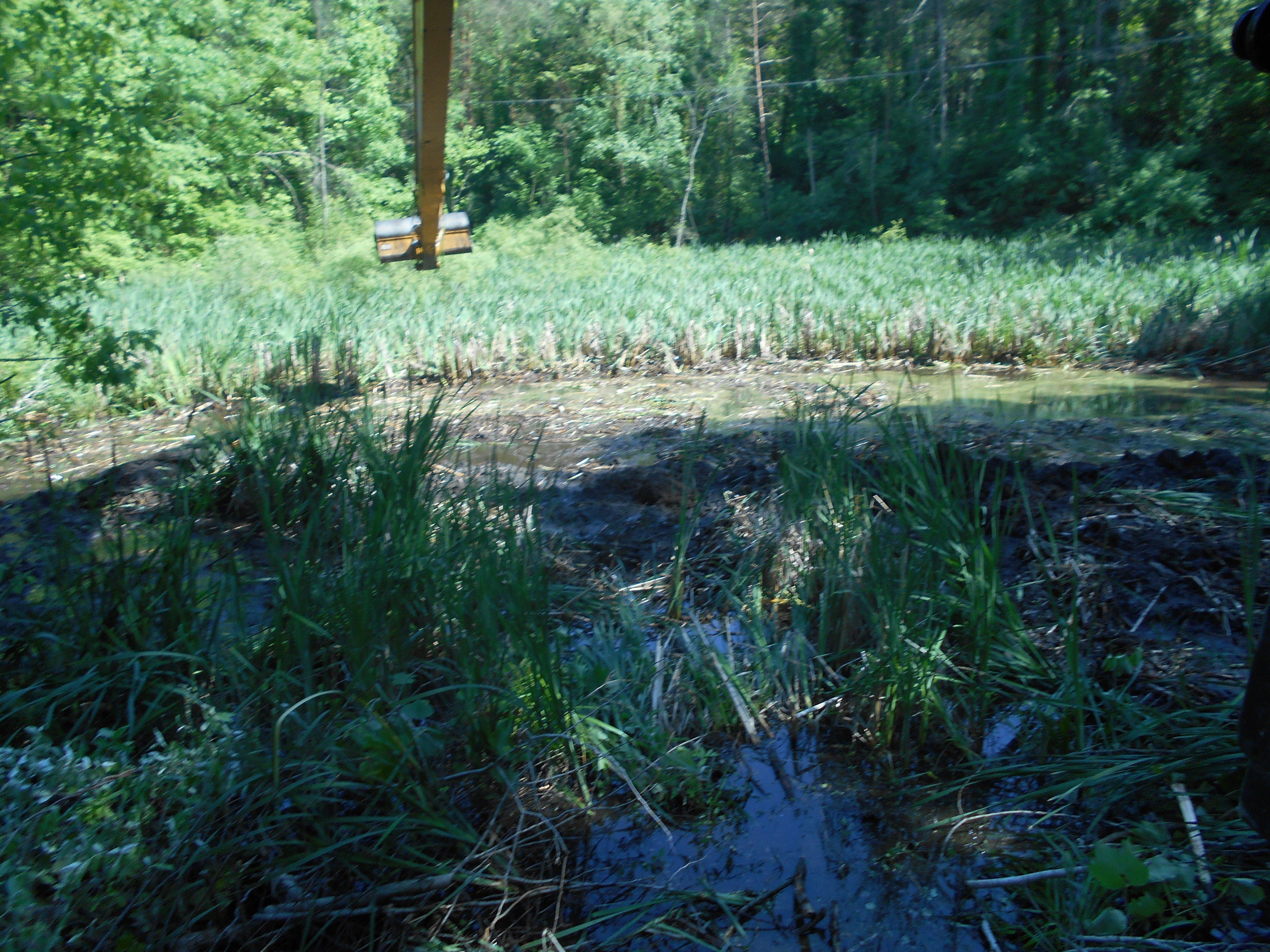 Ada, MI clean out swamp new pond (17) (N)