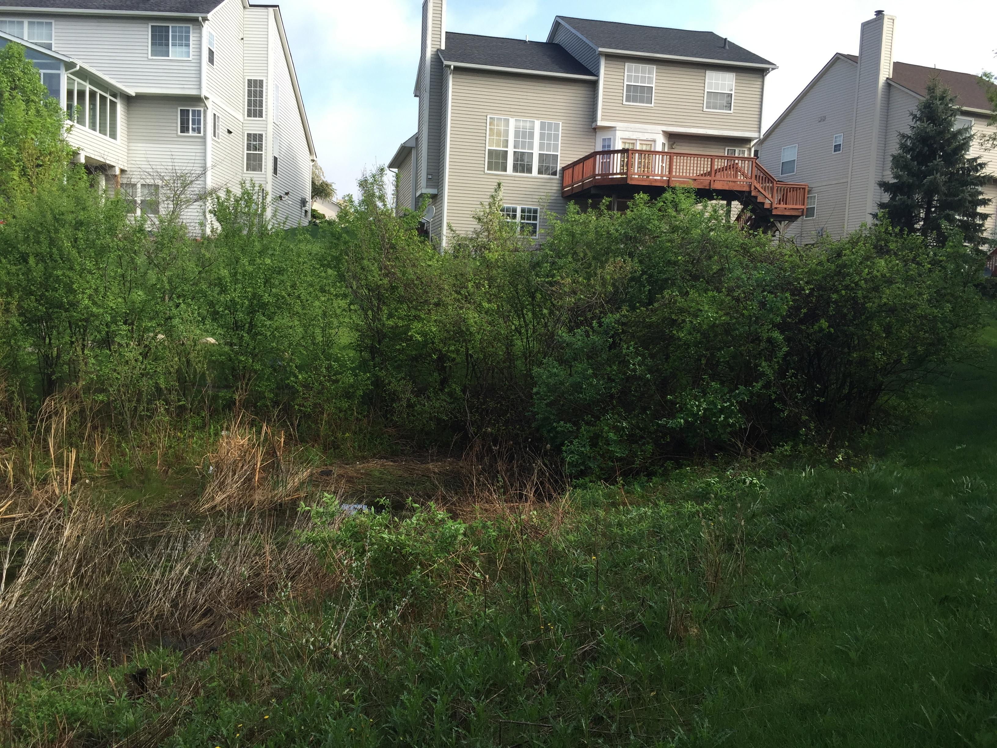 Ann Arbor, Michigan retention basin pond fix (89).jpg