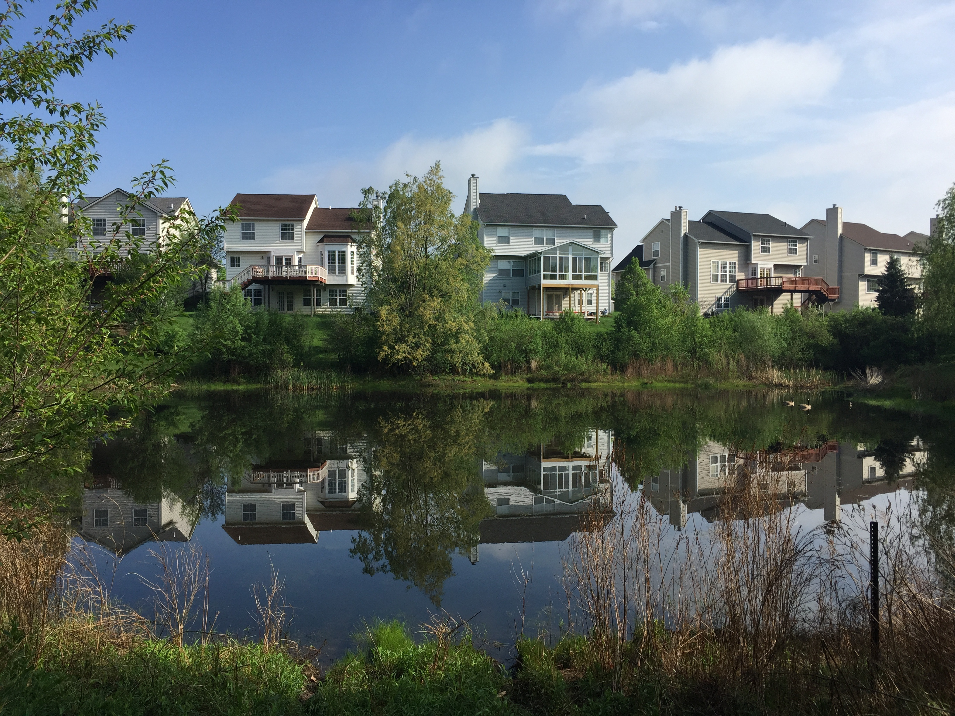 Ann Arbor, Michigan retention basin pond fix (91).jpg