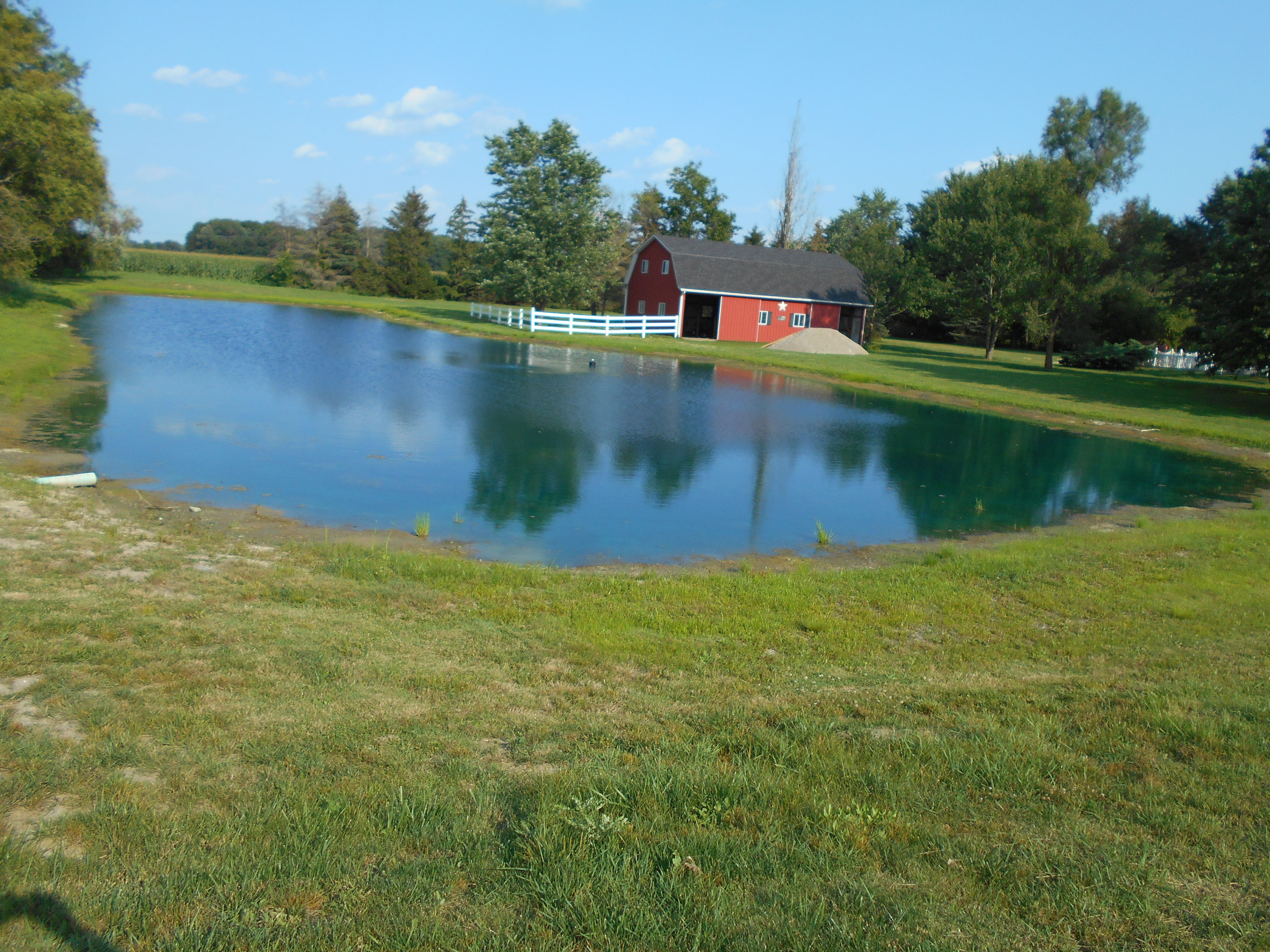 Britton, MI New Pond (75).jpg
