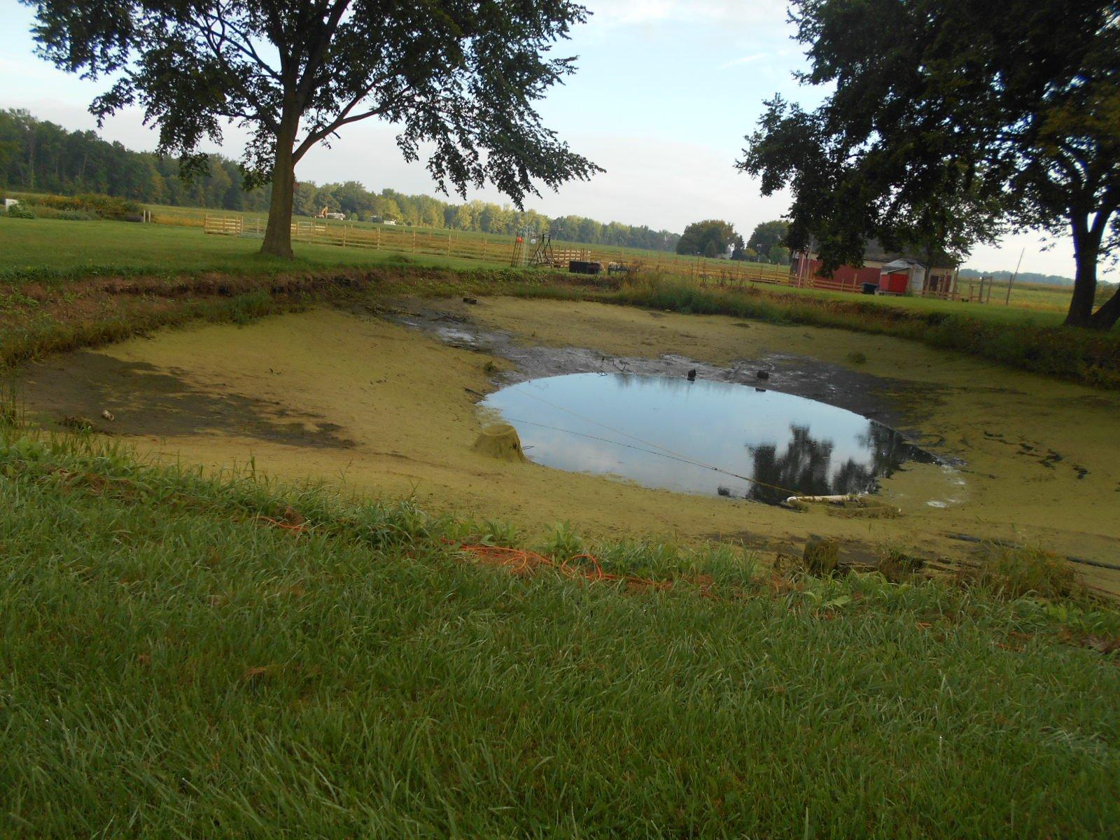Burt, MI Pond Clean Out (2)