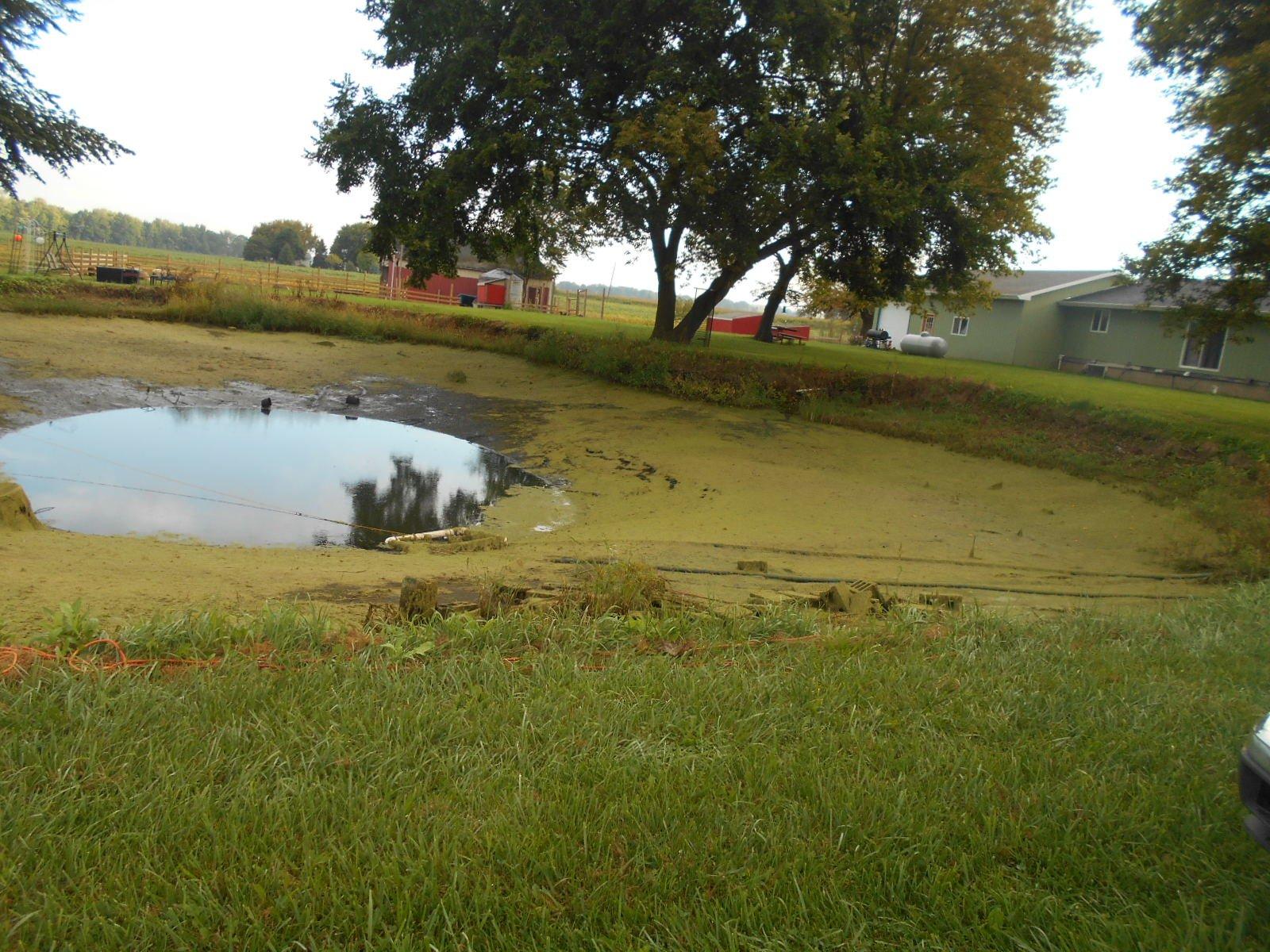 Burt, MI Pond Clean Out (3)