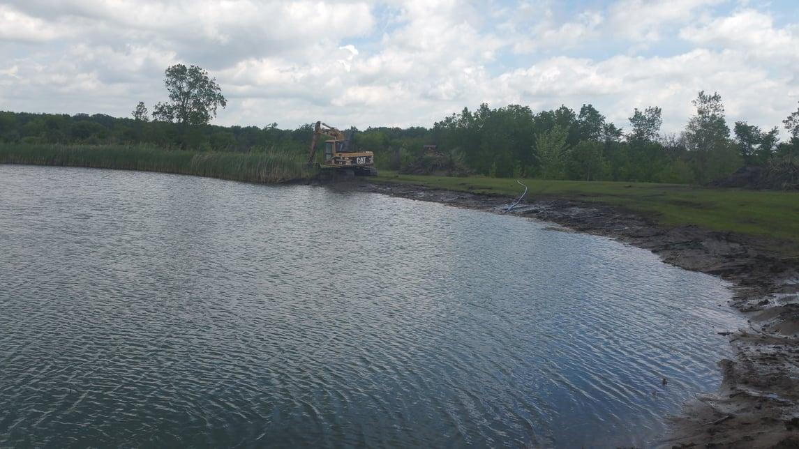 Carleton, Michigan Cattail removal Michiagan (10).jpg