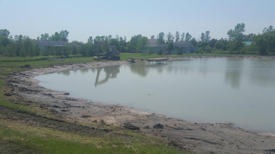 Carleton, Michigan Cattail removal Michiagan (26).jpg
